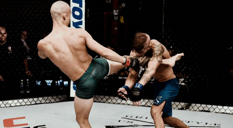 Apostas UFC Online
