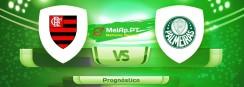 Flamengo vs Palmeiras – 30-05-2021 19:00 UTC-0