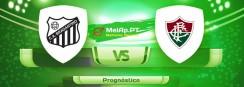 Bragantino-Sp vs Fluminense RJ – 13-06-2021 23:30 UTC-0