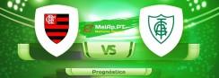 Flamengo vs América FC MG – 13-06-2021 19:00 UTC-0