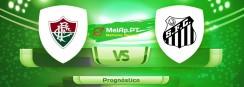 Fluminense RJ vs Santos – 17-06-2021 22:00 UTC-0