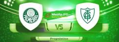 Palmeiras vs América FC MG – 20-06-2021 14:00 UTC-0