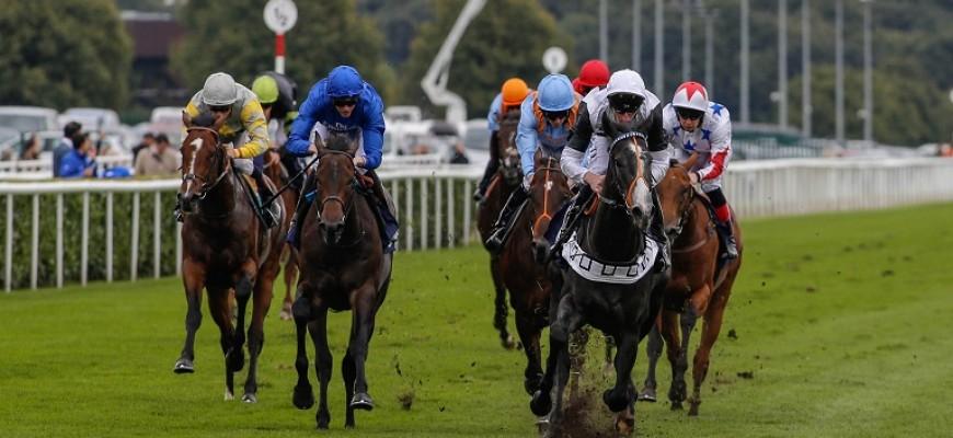 William Hill, sempre presente nas corridas de cavalos: novo patrocinador do Festival da Prata de Northumberland - Melap.PT