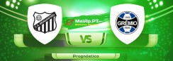 Bragantino-Sp vs Gremio FB Porto Alegrense RS – 01-08-2021 00:00 UTC-0