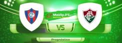 Cerro Porteno vs Fluminense RJ – 13-07-2021 22:15 UTC-0