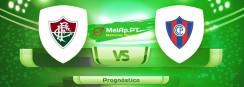 Fluminense RJ vs Cerro Porteno – 20-07-2021 22:15 UTC-0