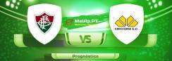 Fluminense RJ vs Criciúma EC SC – 31-07-2021 19:30 UTC-0