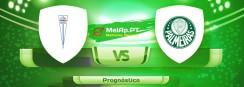 Universidade Católica vs Palmeiras – 14-07-2021 22:15 UTC-0