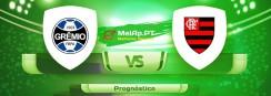 Gremio FB Porto Alegrense RS vs Flamengo – 26-08-2021 00:30 UTC-0