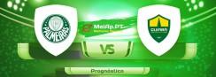 Palmeiras vs Cuiaba Esporte Clube MT – 22-08-2021 14:00 UTC-0