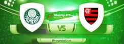 Palmeiras vs Flamengo – 12-09-2021 19:00 UTC-0